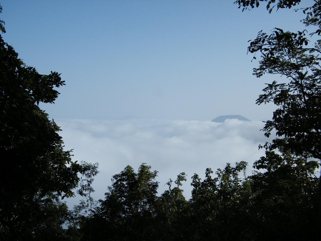 ภูทอก ทะเลหมอก