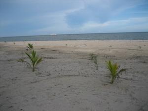 หาดทรายหน้าบ้าน กว้างมาก เตะบอลได้เลย