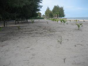 หาดทรายขาวสะอาด ไม่พลุกพล่าน
