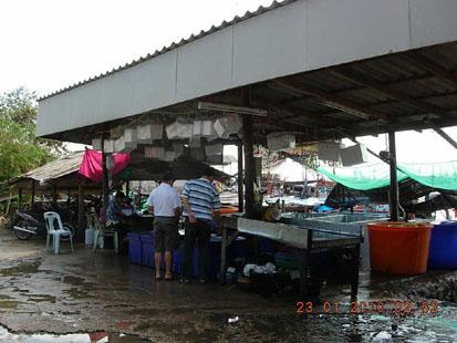 ร้านจำหน่ายอาหารทะเลสดๆราคาถูก