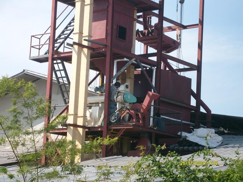 Pellet Mill เครื่องอัดเม็ดอาหารสัตว์