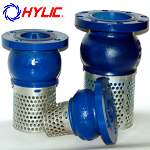 Hylic / Foot Valve with Strainer Figure HFV100