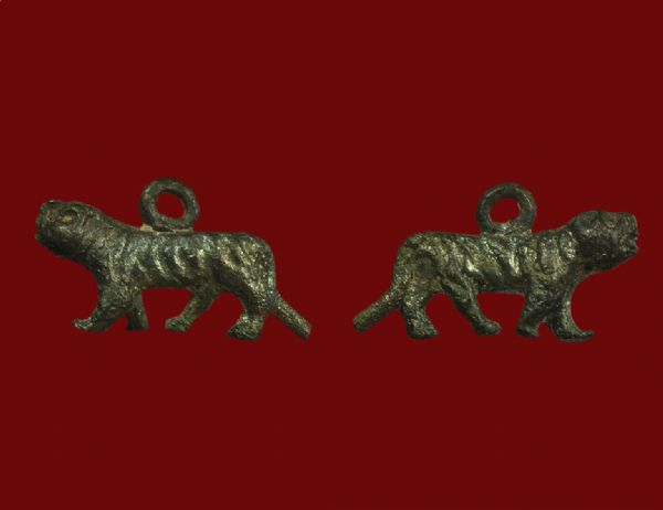 เสือหล่อโบราณ หลวงพ่อบุญชู วัดหนองโรง จ.กาญจนบุรี