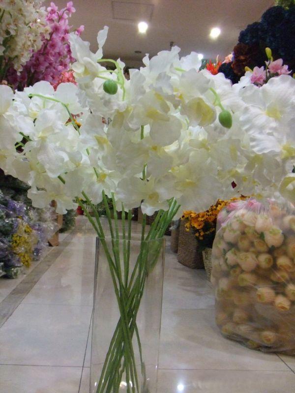 ของตกแต่งบ้าน : ดอกแวนด้าสีขาว