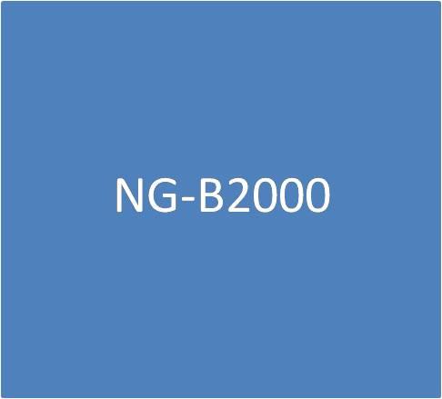 NG-B2000