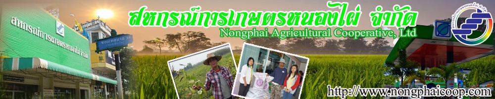 เว็บไซต์ สหกรณ์การเกษตรหนองไผ่ จำกัด