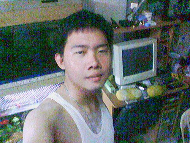 (Root) 2010218_68169.jpg