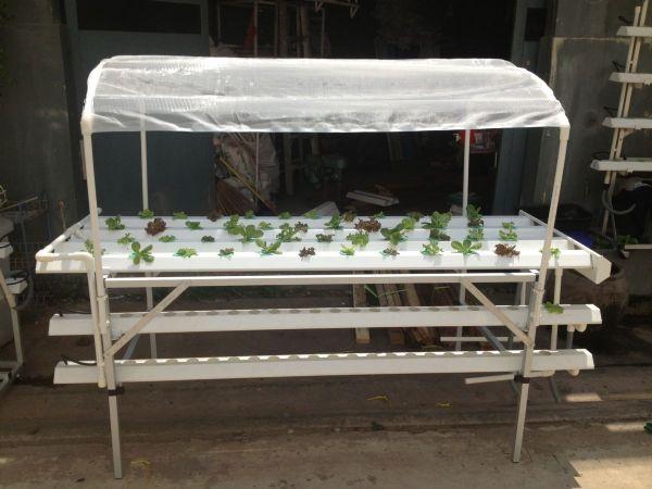 ชุดปลูกผักไฮโดรโปนิกส์ ขนาด 2 เมตร 6 รางปลูก
