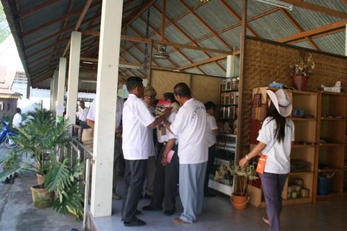 (thaiherbs) 200992_72624.jpg