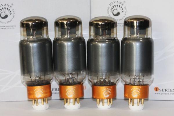 6CA7 - T II Psvane Gold Pin